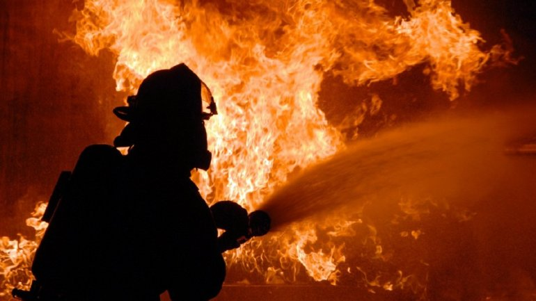 В Днепре мужчина жарил шашлык и спалил гектар травы