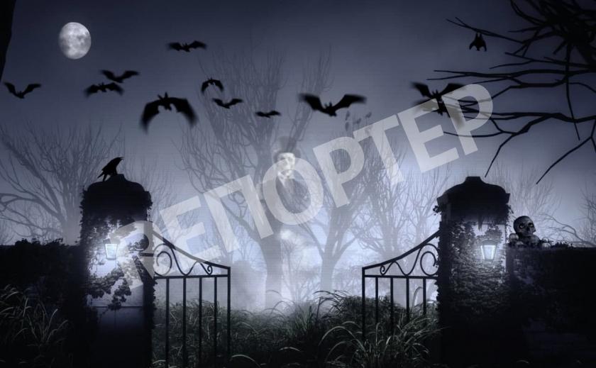ТОП-5 «ТРЭШ-NEWS» второй декады ноября