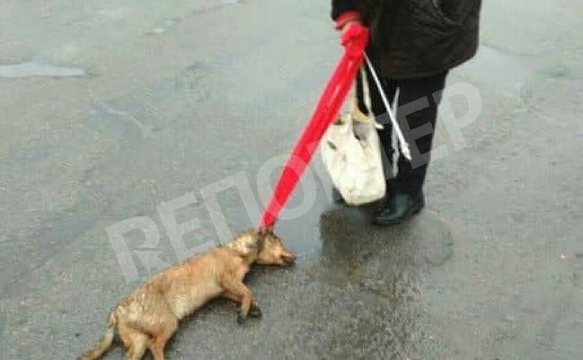 Если на вас вешают мёртвых собак, не пожалейте мешок