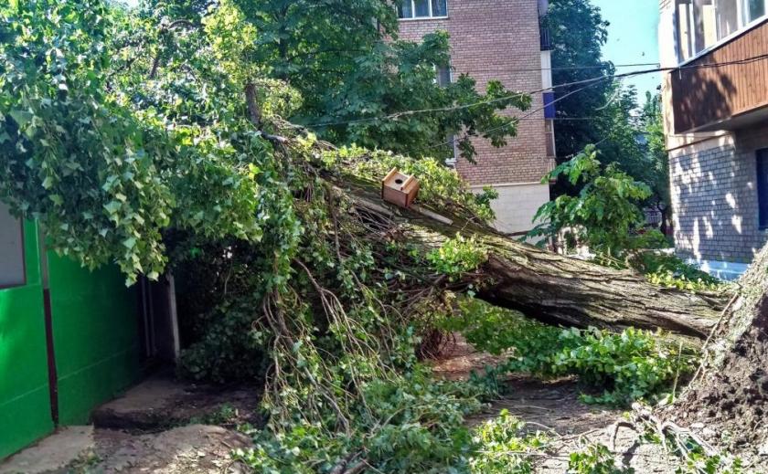 Ураган обошелся Кривому Рогу в 40 миллионов ФОТО
