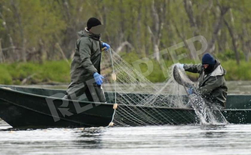 Браконьеры Днепропетровщины наловили 2 т рыбы