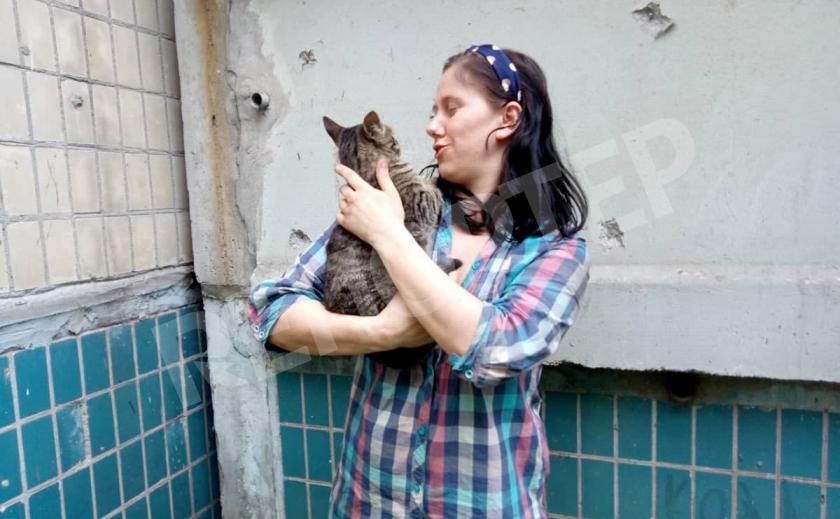 Днепровские спасатели не оставили в беде кота