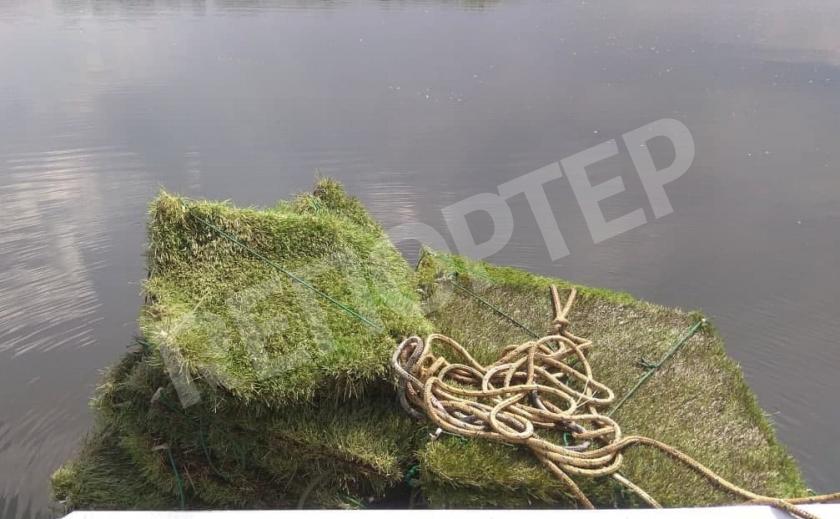 На Днепропетровщине завершился нерест плотвы и густеры