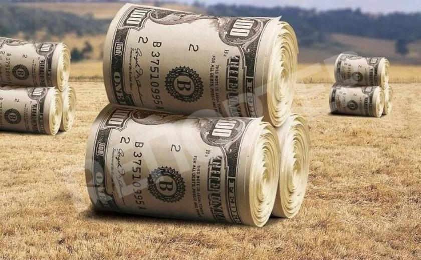 На Днепропетровщине одна из самых низких цен на землю