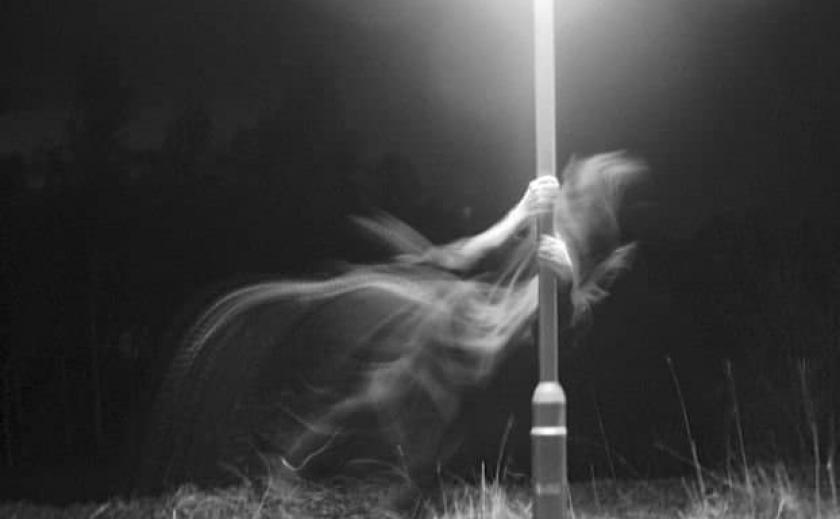 Автопилот электрокара Tesla зафиксировал привидение на кладбище