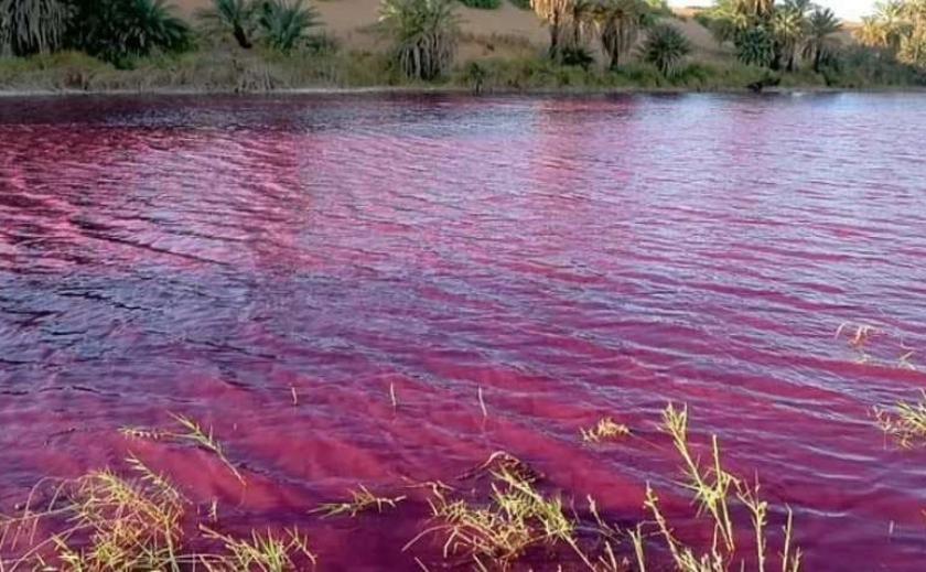 Десять казней египетских: в Иордании озеро стало «кровавым»