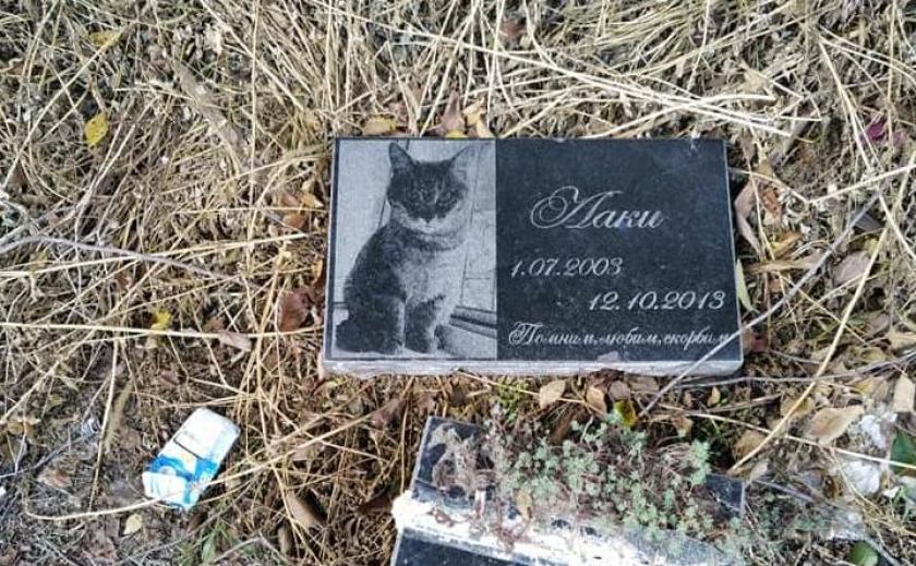 В Днепре коммунальщики надругались над кладбищем: горожане в ярости
