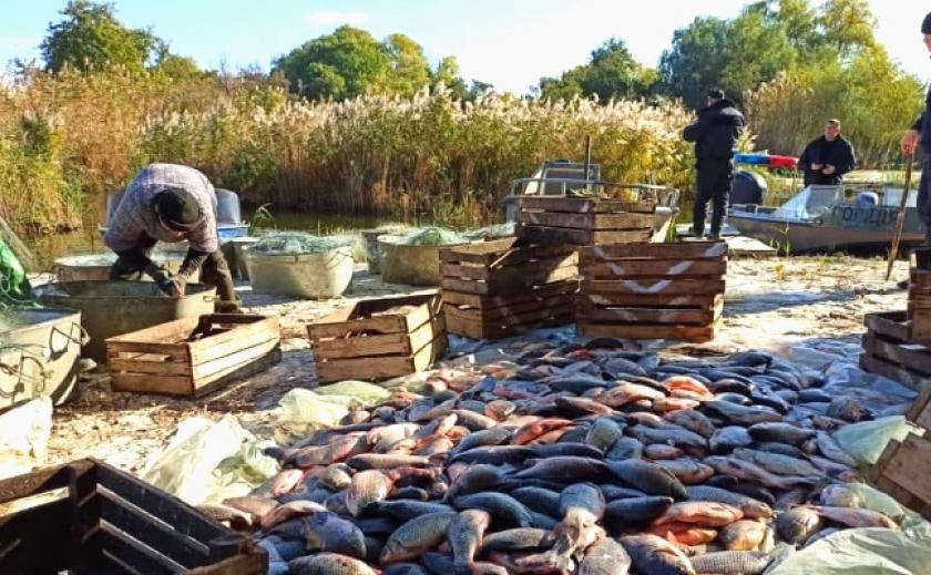 В Украине выросли штрафы за незаконный вылов рыбы. Сом обойдется в 5 тыс. грн.