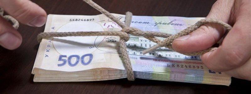 Преступные фирмы треть работ по озеленению Днепра проводили на бумаге