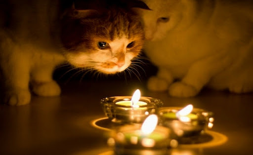 Сразу после праздника Днепр останется без электроэнергии АДРЕСА