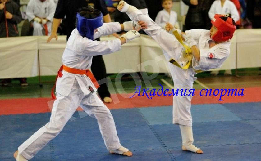 Академия спорта. Президент областной федерации каратэ рассказал об этапах развития