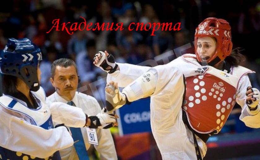Академия спорта. О становлении тхеквондо ВТФ в Украине