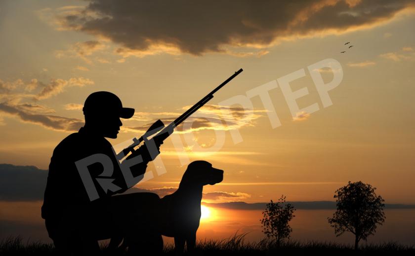 Охота и охотники