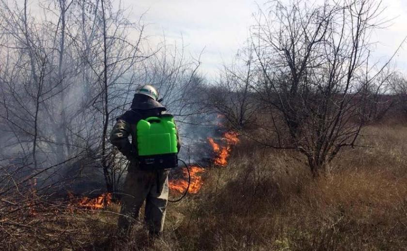 На Днепропетровщине горела степь ФОТО
