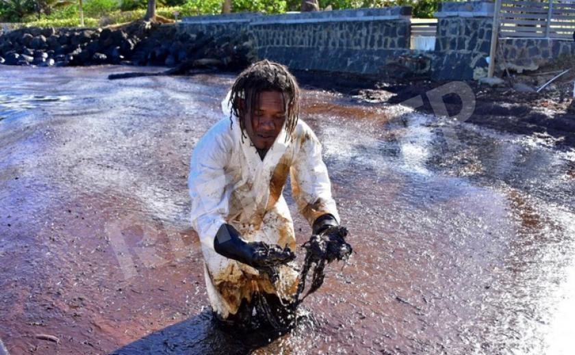 Ноу-хау. Маврикийцы отрезают волосы, пытаясь остановить разлив нефти