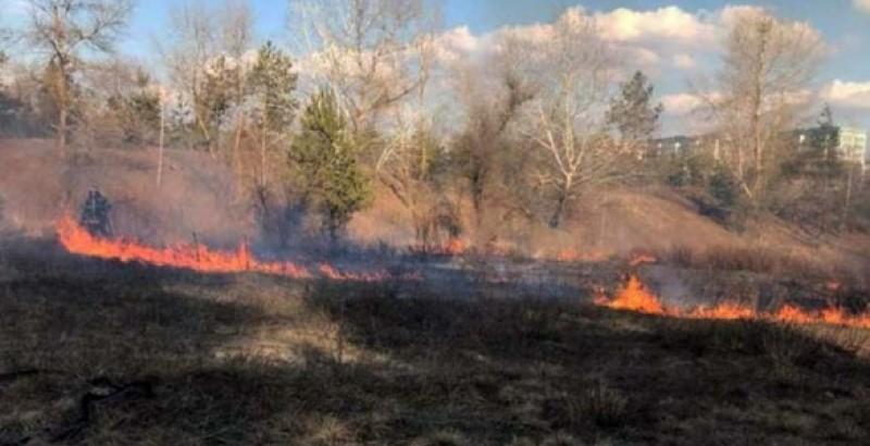 В Каменском спасатели не допустили распространения пожара