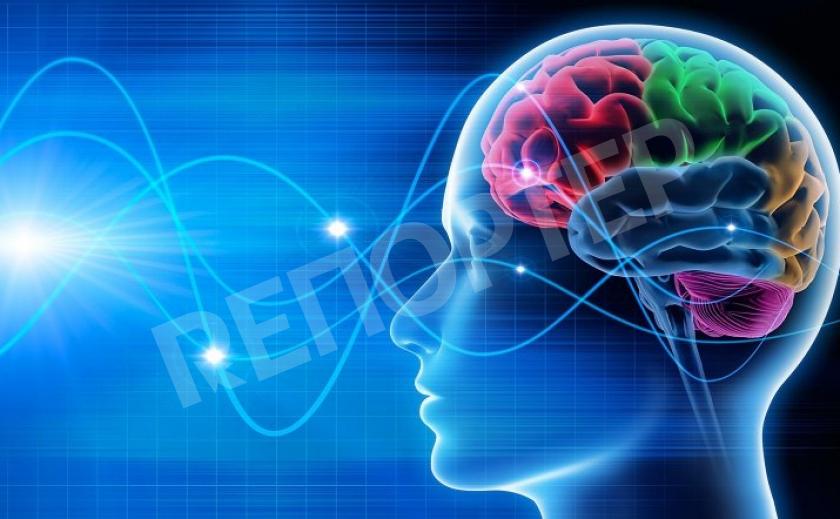 Коронавирус вызывает неврологические нарушения и губителен для мозга